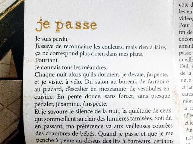 nouvelle risographie sauveur pauline éditions poïein livre d'artiste trois maisons