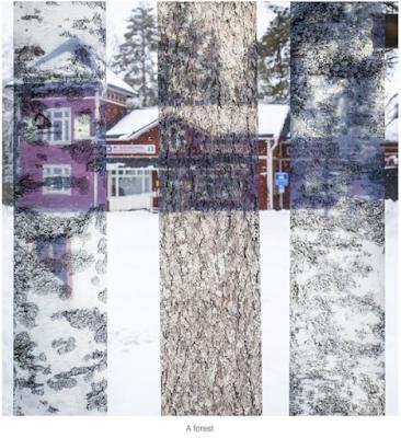Finlande photographe Eric Flogny