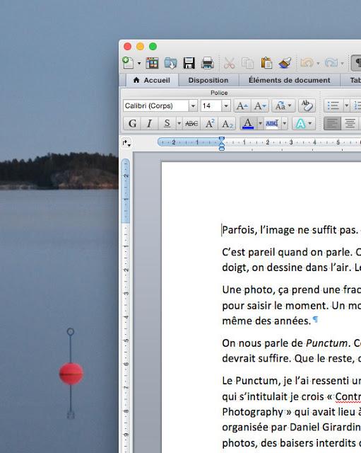 pauline sauveur auteure préface Christophe Dillinger deviens ce que tu es Jacques Flament éditions