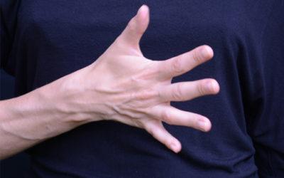 mains – études
